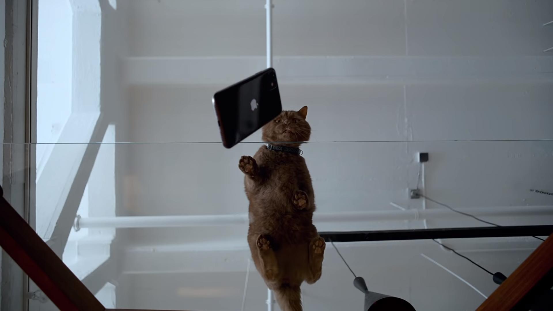 Üzenetet rejtett az Apple a bemutató videójába az arra érdemeseknek